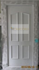 E1 panelos ajtó